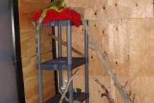 Storage-Shelf-Iguana-Tower