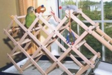 Wine-Rack-Bird-Gym