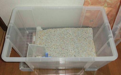 Storage Bin Litter Box House Petdiys Com