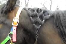 DIY-Horse-Mane-Diamond-Braid