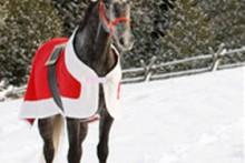 DIY-Santa-Horse-Blanket