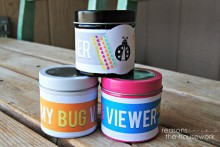DIY-Bug-Viewing-Jar