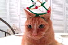 DIY-Christmas-Tree-Headband