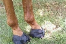 DIY-Soft-Boots