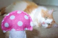 DIY-Fabric-Mushroom-Cat-Toy