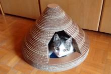 DIY-Cardboard-Cat-Tepee
