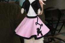 DIY-Doo-Wop-Ferret-Costume