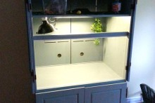 Armoire-Bearded-Dragon-Cage