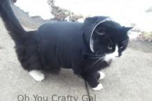 DIY-Cat-Hoodie