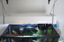 DIY-Wall-Mounted-Aquarium-Light