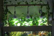 DIY-Wood-Frame-Aquarium-Lights