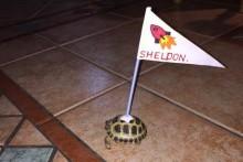 DIY-Turtle-Flag