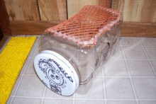 Plastic-Container-Hamster-Carrier