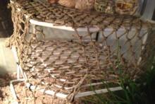 Corner-Rack-Crab-Climbing-Area