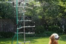 DIY-Dog-Water-Park