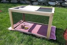 DIY-Outdoor-Lizard-Cage