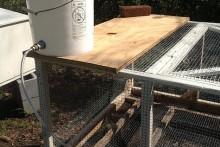 DIY-Rabbit-Water-Dispenser