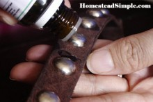 DIY-Tick-Repellent-Dog-Collar