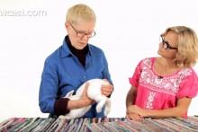 DIY-Bloated-Rabbit-Massage