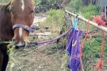 DIY-Horse-Hay-Bag