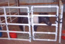 PVC-Pony-Pen