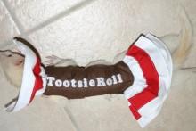 DIY-Ferret-Tootsie-Roll-Costume