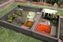 Planter-Bed-Box-Enclosure