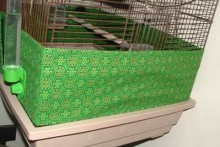 DIY-Bird-Seed-Guard-Wrap