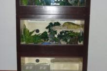 DIY-Wood-Box-Reptile-Cage