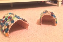 Popsicle-Stick-Hermit-Crab-Hut