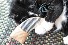 DIY-Catnip-Christmas-Stocking-Toy