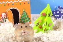 DIY-Hamster-Christmas-Treat-Tree