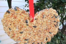 DIY-Bird-Feeder-Valentine