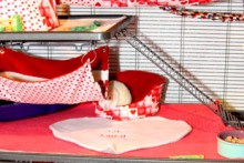 DIY-Valentines-Day-Heart-Rug