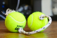 DIY-Double-Tennis-Ball-Rope-Toy